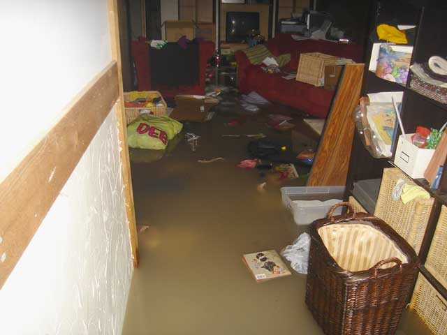 Flood Repair Service